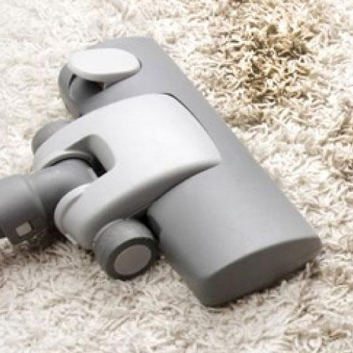 Carpet Mould Removal Service