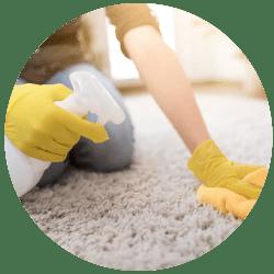 Carpet Odour Removal Service