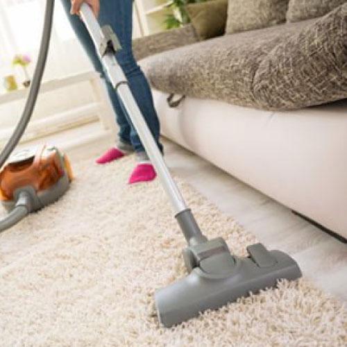 Germ free Carpet Service