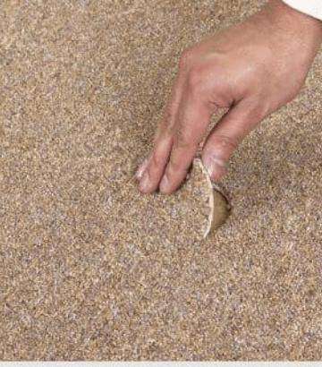 Carpet Repair and Patching